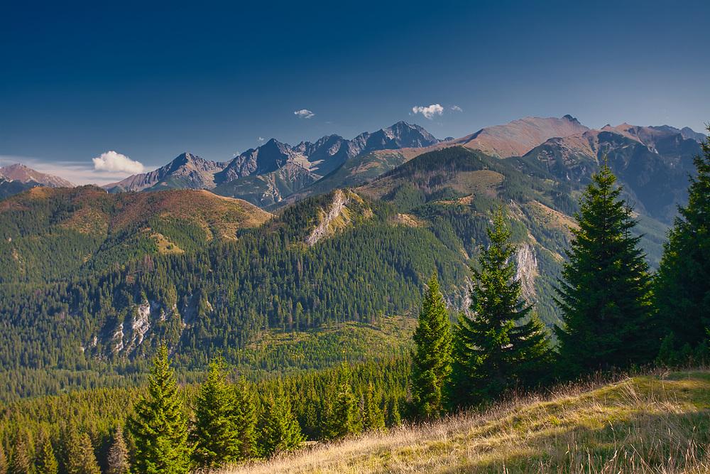 Panorama z Gęsiej Szyi w kierunku Tatr Wysokich