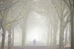 © Licensed to London News Pictures. 12/03/2016<br /> A woman walks her dog through heavy fog in Foots Cray Meadows  in  Sidcup, Kent this morning. Photo credit: Grant Falvey