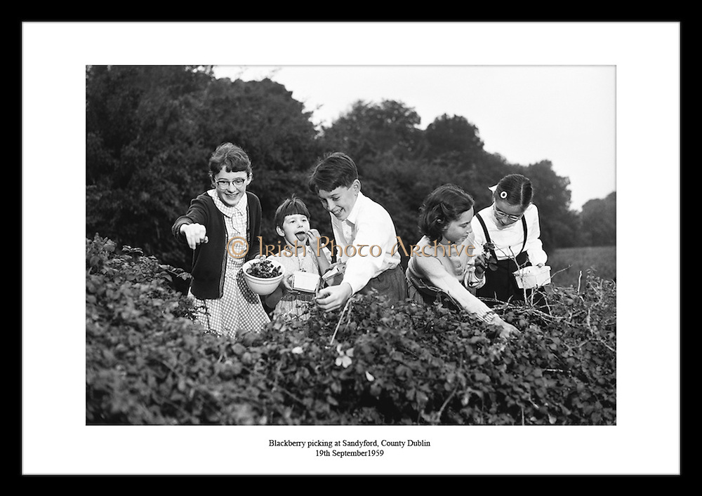 Take a journey through the Irish History with our Old Irish black and white photos. Gifts which will give real pleasure to your grandad on his special day. Creative Christmas gifts from Ireland delivered to the USA. Pick your favorite Old photography prints, from thousands of Irish Historic pictures, available from Irish Photo Archive.
