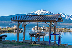 A fishing cleaning station, and pelicans at Henrys Lake at Island Park Idaho