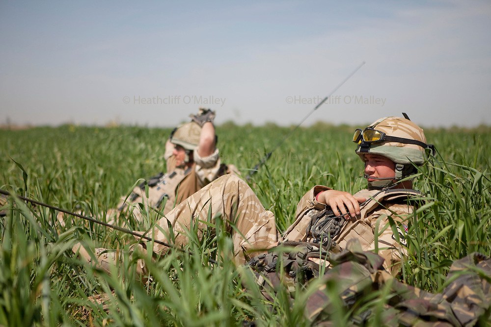 Mcc0021206 . Sunday Telegraph..Soldiers from the Counter IED Task Force just outside Nad e Ali whilst on a search for a device layed by the Taliban  in Helmand province, Afghanistan...Helmand , 17 March  2010