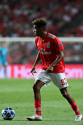August 21, 2018 - Lisbon, Portugal - Benfica's Portuguese midfielder Gedson Fernandes in action during the UEFA Champions League play-off first leg match SL Benfica vs PAOK FC at the Luz Stadium in Lisbon, Portugal on August 21, 2018. (Credit Image: © Pedro Fiuza via ZUMA Wire)