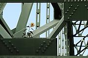 Sunflower, Samuel Morey Memorial Bridge, Orford, N.H., Friday, October 12, 2012.<br /> Valley News - James M. Patterson