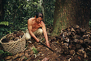 Ese'eja Indian 'Castañera' Brazil Nut Collector<br />