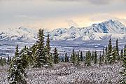 An early season snow across the Alaska Range of mountains at sunset in Denali National Park, McKinley Park, Alaska