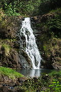 """Waimea Falls. Valley is a historical nature park with botanical gardens, at 59-864 Kamehameha Highway, Haleiwa, on the North Shore of island of Oahu, Hawaii, USA. Formerly known as """"Waimea Valley Audubon Center,"""" since 2008 the garden has been managed by Hi'ipaka LLC, a non-profit company created by the Office of Hawaiian Affairs. Hawaii is the northernmost island group in Polynesia."""