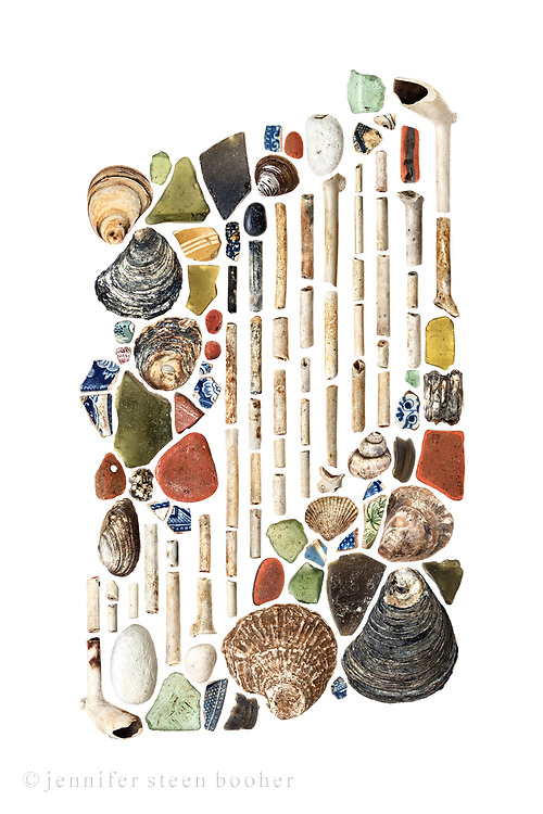 Oyster shells, 18th century glass, mostly 19th century pottery although a couple of pieces could be earlier, 18th century clay pipes and stems, river snail shell (Viviparus viviparus), clam shell (possibly the invasive Corbicula fluminea and Mya arenaria), pig tooth, herbivore tooth, chalk, and brick. [Still working on IDing everything.]