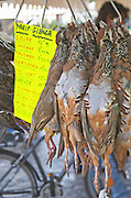 On a street market. Partridge perdreaux. On Les Quais. Bordeaux city, Aquitaine, Gironde, France