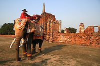 A fun and popular way to get around all the temples and sights of Ayutthaya is on an elephant ride.  Mahouts dress up in colorful costume and guide visitors around the sites and give you the chance to play with the elephants as well.