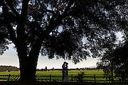 Healdsburg Garden Wedding