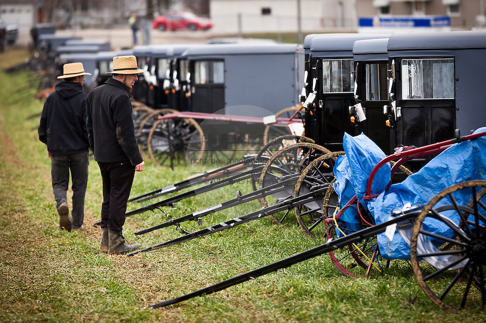 Amish men inspect horse buggies ready for auction during the Annual Mud Sale to support the Fire Department  in Gordonville, PA.