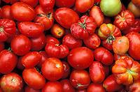 Italie - Toscane - Étales d'un marché - Tomates