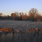 The pastures of the Mirandese plateau, with its stone walls.