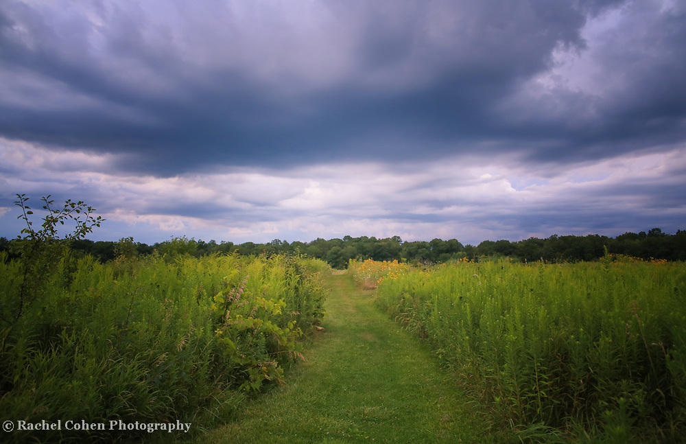 """""""Convergence""""<br /> Storm clouds converge over the green fields of a Michigan farm!"""