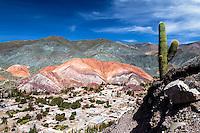 CERRO DE LOS SIETE COLORES, PUEBLO DE PURMAMARCA Y CARDON (Trichocereus pasacana), QUEBRADA DE HUMAHUACA, PROVINCIA DE JUJUY, ARGENTINA (PHOTO © MARCO GUOLI - ALL RIGHTS RESERVED)