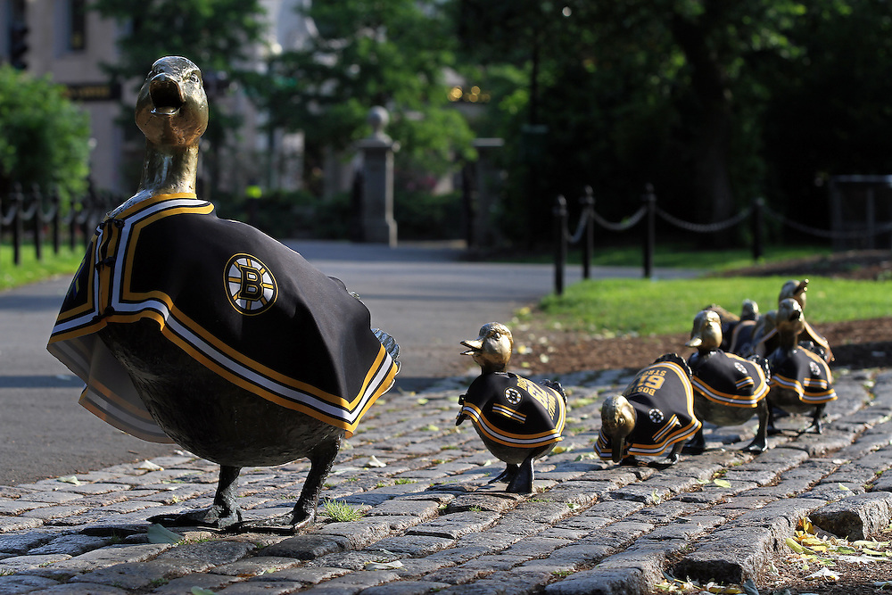 http://juergen-roth.pixels.com/featured/boston-bruins-ducklings-juergen-roth.html <<< Photo prints - framed, matted, print only.