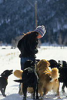 A young woman walks her dogs in Jackson Hole, Wyoming.