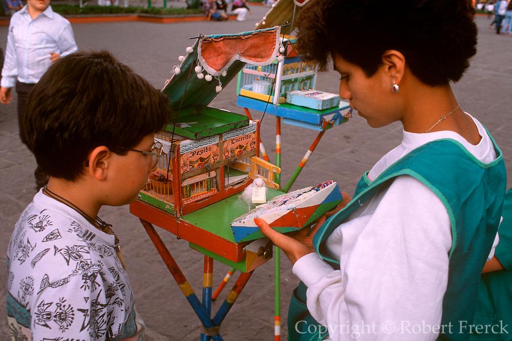 MEXICO, MEXICO CITY Coyoacan, bird tells fortunes