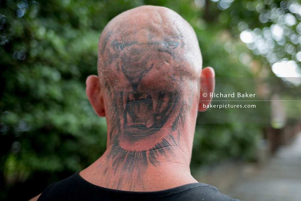 The rear view of a young man's sunburned neck and head that has been tattooed with a roaring tiger's head, in south London, on 19th August 2019, in London, England.