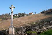 vineyard dezize les maranges santenay cote de beaune burgundy france