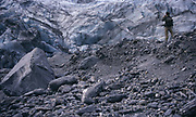 The Fox Glacier as of 2001. Approach to its mouth was still possible. This view is from an old point of approach. The Glacier was already very much in retreat in 2001.