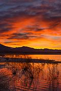 Dawn, Ash Meadows National Wildlife Refuge, Nye County, Nevada
