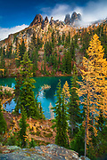Mountain Larches at Blue Lake