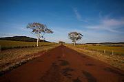 Capinopolis_MG, Brasil...Projeto Beira de Estrada...Rota Triangulo e Alto Paranaiba..Foto: LEO DRUMOND / NITRO