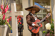 A blind mariachi singer plays at a tomb at the San Miguel cemetery during the Day of the Dead Festival known in spanish as Día de Muertos on November 2, 2013 in Oaxaca, Mexico.