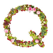 Capital Letter Q Part of a set of letters, Numbers and symbols of the Alphabet made with flowers, branches and leaves on white background