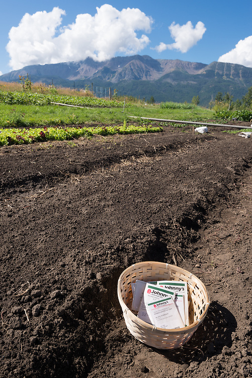 Seed packets on a farm in Oregon's Wallowa Valley.