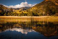 Lockett Meadow, San Francisco Peaks, Coconino National Forest, AZ