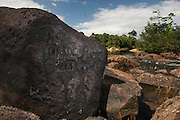 Petroglyphs<br /> Fairview<br /> Iwokrama Reserve<br /> GUYANA<br /> South America<br /> ancient