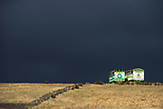 Cattle truck<br /> Pulingue San Pablo community<br /> Chimborazo Province<br /> Andes<br /> ECUADOR, South America