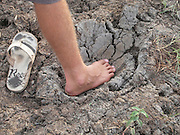 Sri Lanka, Ampara District, Arugam Bay, man places foot in elephant footprint