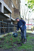 Cressingham Gardens tenant Nicolas Greaves during a community planting day for Lambeths biggest rain garden project, supported by London Wildlife Trust on 18th April 2015 in South London, United Kingdom. Cressingham Gardens is a council garden estate, located on the southern edge of Brockwell Park. It comprises of 306 dwellings and built to the design of Lambeth Borough Council architect Edward Hollamby in the early 1970s. In 2012, Lambeth Council proposed regeneration of the estate, a decision highly opposed by many residents. Since the announcement, the highly motivated campaign group Save Cressingham Gardens has been active.