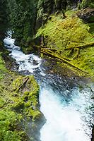 Sahalie Falls on the McKenzie River, Oregon.