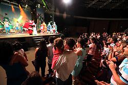 O espetáculo Universo de Casuo apresenta o Natal por um universo paralelo regado de cores, sonhos e fantasias com apresentações acrobáticas, clown, música ao vivo e efeitos especiais. O Universo Casuo – Especial de Natal é uma das atrações do Brilha Porto Alegre, uma realização do Sindilojas Porto Alegre, CDL POA e Sindha, e conta com o apoio institucional da Prefeitura da Capital, apoio do Shopping TOTAL. FOTO: Marcos Nagelstein/ Agência Preview