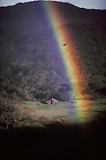 Weather: Rainbow in Wooden Valley, Napa County, California. A rainbow silhouettes a turkey vulture. Rainbows occur when the observer is facing falling rain but with the sun behind them. White light is reflected inside the raindrops and split into its component colors by refraction. (1988)