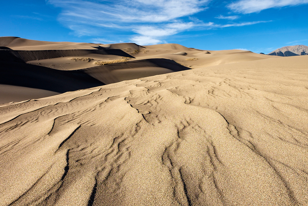 It's just how we imagined....beautiful (and BIG!) dunes everywhere.