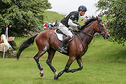 PARKLANE HAWK ridden by William Fox-Pitt at Bramham International Horse Trials 2016 at  at Bramham Park, Bramham, United Kingdom on 11 June 2016. Photo by Mark P Doherty.