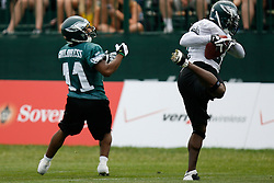 Bethlehem, PA - August 2nd 2008 - Free Safety Brian Dawkins intercepts a pass intended for teamate Wide Receiver Bam Childress during the Philadelphia Eagles Training Camp at Lehigh University (Photo by Brian Garfinkel)