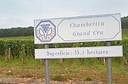 Vineyard. Chambertin Grand Cru.  Gevrey Chambertin, Cote de Nuits, d'Or, Burgundy, France
