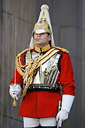 Soldier of the Life Guards Regiment on guard duty in London, United Kingdom