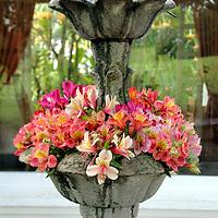 South America, Ecuador, Cotacachi. Flower Fountain at La Mirage Hotel Resort & Spa in Ecuador