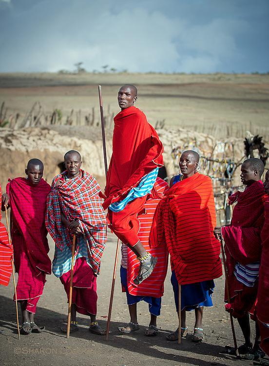 Maasai warriors dance, Tanzania