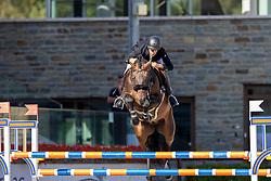 Grant Graham, GBR, Jiamo VDS<br /> Nationaal Kampioenschap KWPN<br /> 6 jarigen springen final<br /> Stal Tops - Valkenswaard 2020<br /> © Hippo Foto - Dirk Caremans<br /> 19/08/2020