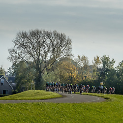 ZWOLLE (NED) CYCLING OCTOBER 16th <br />61e Ster van Zwolle:<br />Race impression
