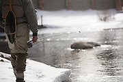 Fly fisherman on the Blue River, Silverthorne, Colorado.