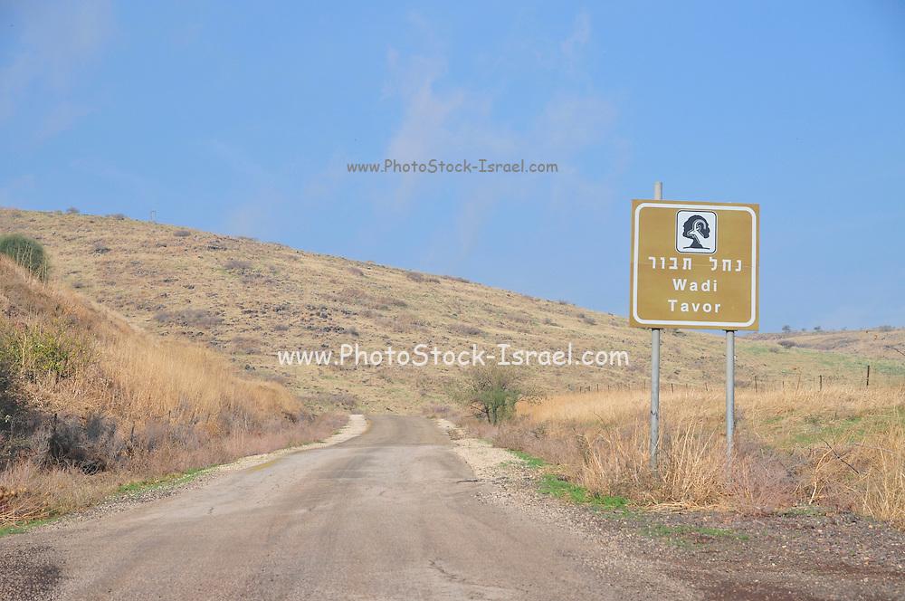 Israel, Jezreel Valley Wadi Tavor Nature reserve